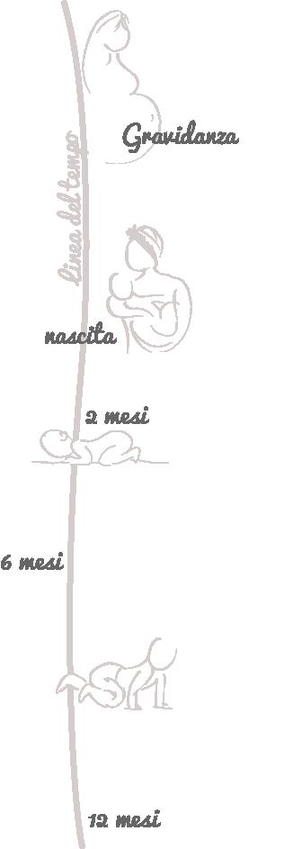linea-del-tempo_illustrazioni